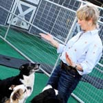 dog-training-fidgeting-TMB