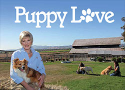 Thumbnail image for Puppy Love – Camilla Teaches Dogs and Owners to Communicate