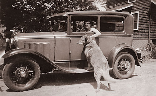 woman in drivers seat of model t ford with lab on running board
