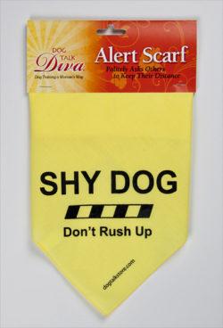 scarf-shy
