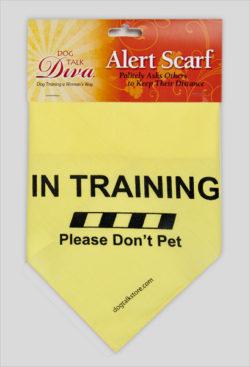 scarf-training-final