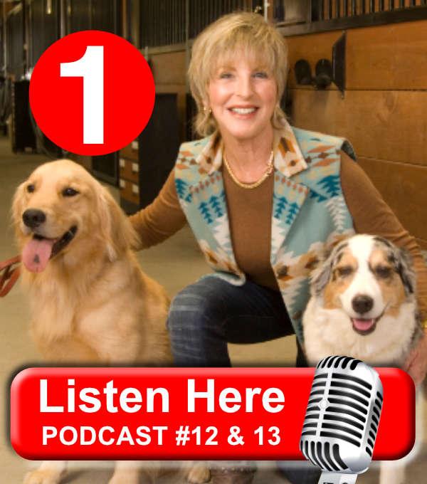 Dog Talk Diva Home - DogTalk Diva