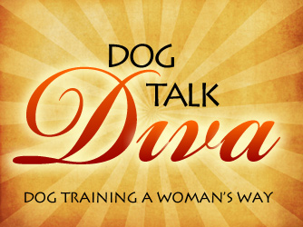 POWER, HIERARCHY and DOMINANCE: Them's Dog-Trainer Fightin